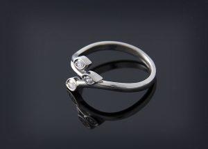 rings 001